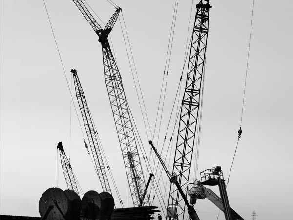 An array of different cranes against a clear, bright sky